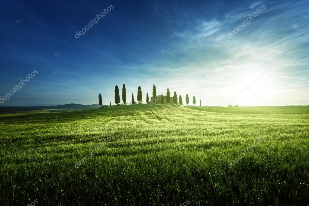 Classic Tuscan views in spring sunset time,  Pienza, Italy