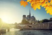 Notre Dame de Paris a na podzim listí, Francie