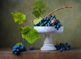 Photo Still life with grapes in a vase and snail