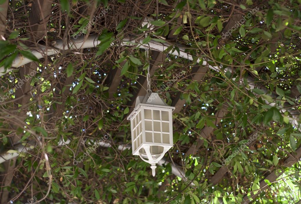 Lámpara En La Terraza De Verano De árbol Cubierta Con