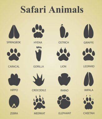 set of safari animal tracks
