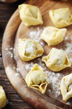 homemade Italian traditional tortellini