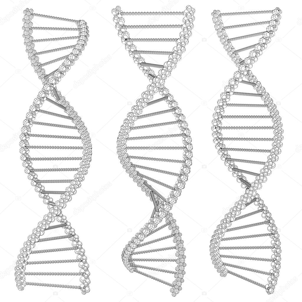 Ilustración de la cadena de ADN-marco de alambre — Foto de stock ...