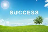 Krajina s úspěchem slovo