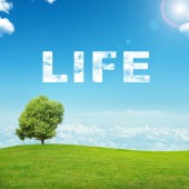 Krajina s slovo života