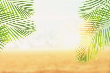 """Картина, постер, плакат, фотообои """"летний пляж с пальмами печать картины"""", артикул 109175340"""