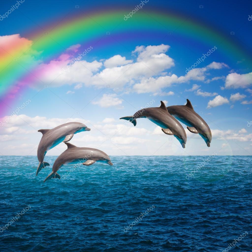 Bando De Golfinhos A Saltar