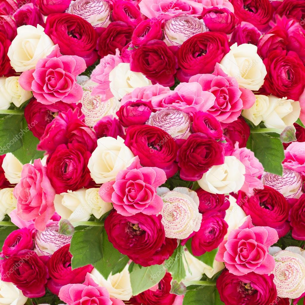 Bunch Of Pink Ranunculus Flowers Stock Photo Neirfys 73788613