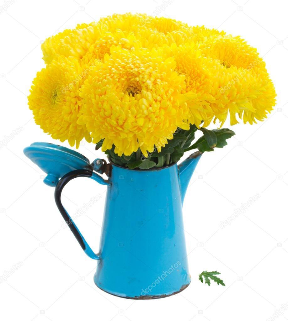 Yellow Mum Flowers Stock Photo Neirfys 76589209
