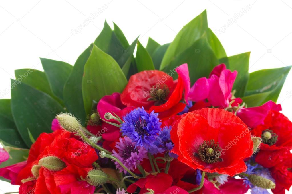 Poppy, sweet pea and corn flowers