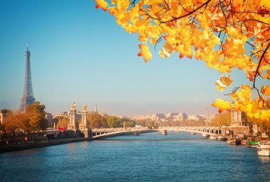 Alexandre III Bridge and Eiffel tower, Paris