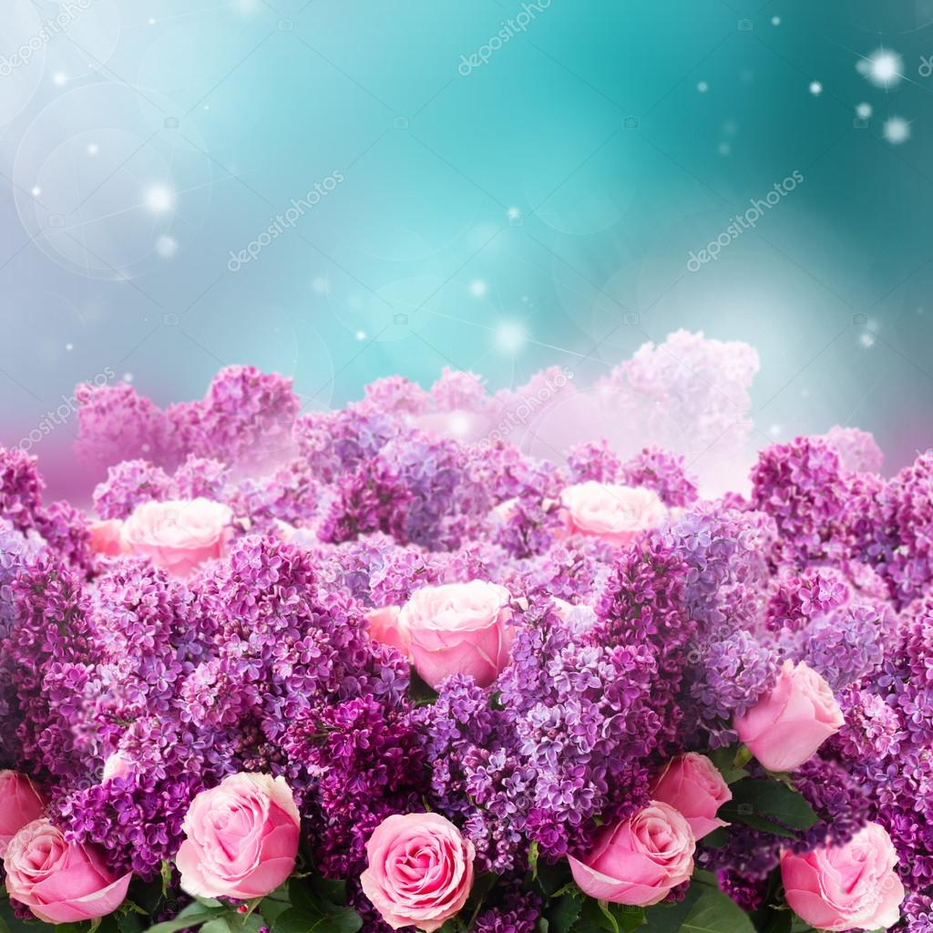 Lilac flowers on blue