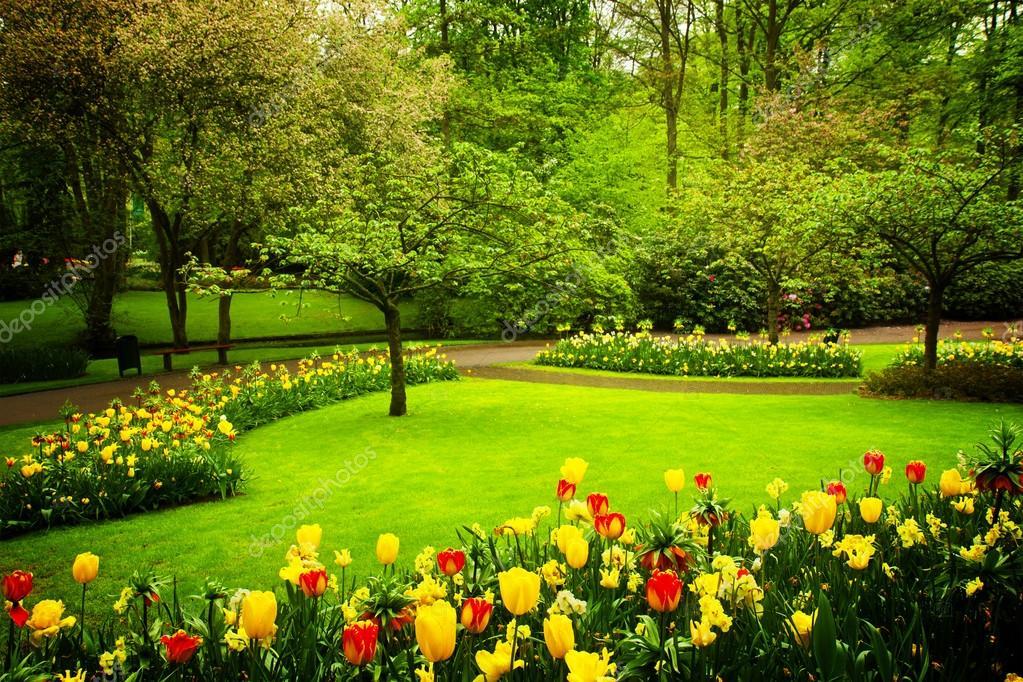 Jardin fleuri de printemps photographie neirfys 99553702 for Amenager un jardin fleuri