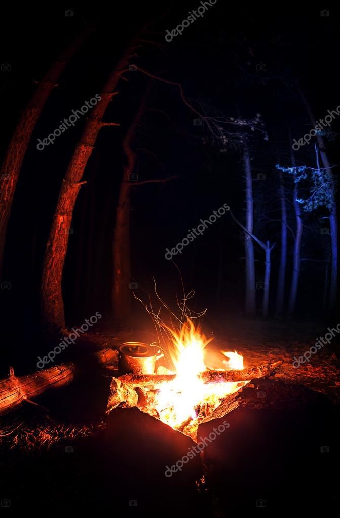 Campfire in the dark forest