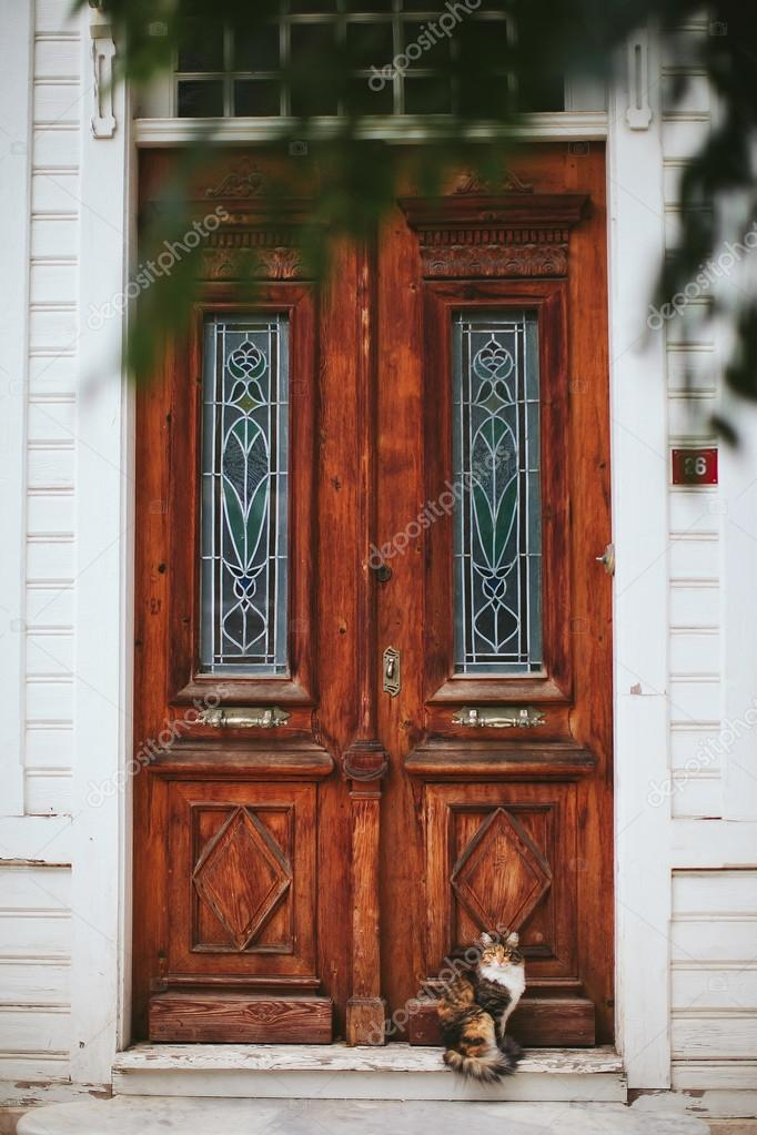 Cat sitting in old wooden door with windows — Stock Photo © Mignon ...