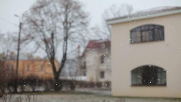 Sokak Ve Ev Arka Plan üzerinde Düşen Kar Stok Video Mignon