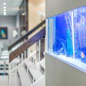 Iroda belsőépítészeti akvárium