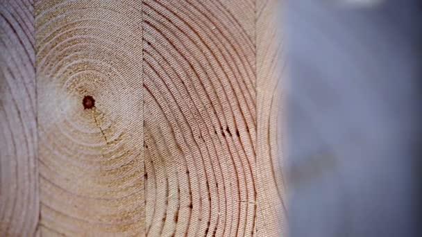 Pohled na povrchu vrstvené dýhy řezivo