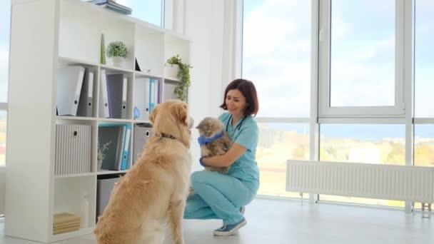 Pes a kočka na veterinární klinice