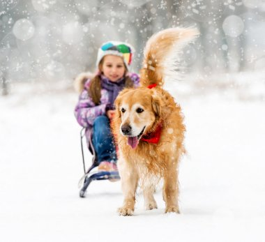 Little girl with sledge and dog
