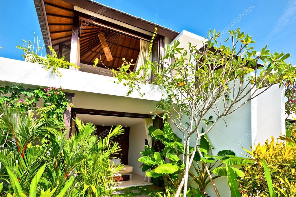 Moderne huis is bedekt met groene kleur decoratieve planten