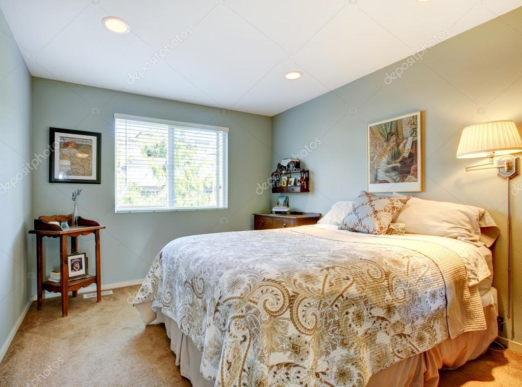 Camera Per Ospiti : Camera per gli ospiti moderno con biancheria beige e moquette