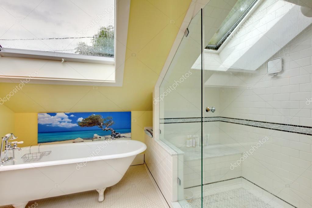 Planta interior luminoso cuarto de baño con ducha y bañera — Fotos ...
