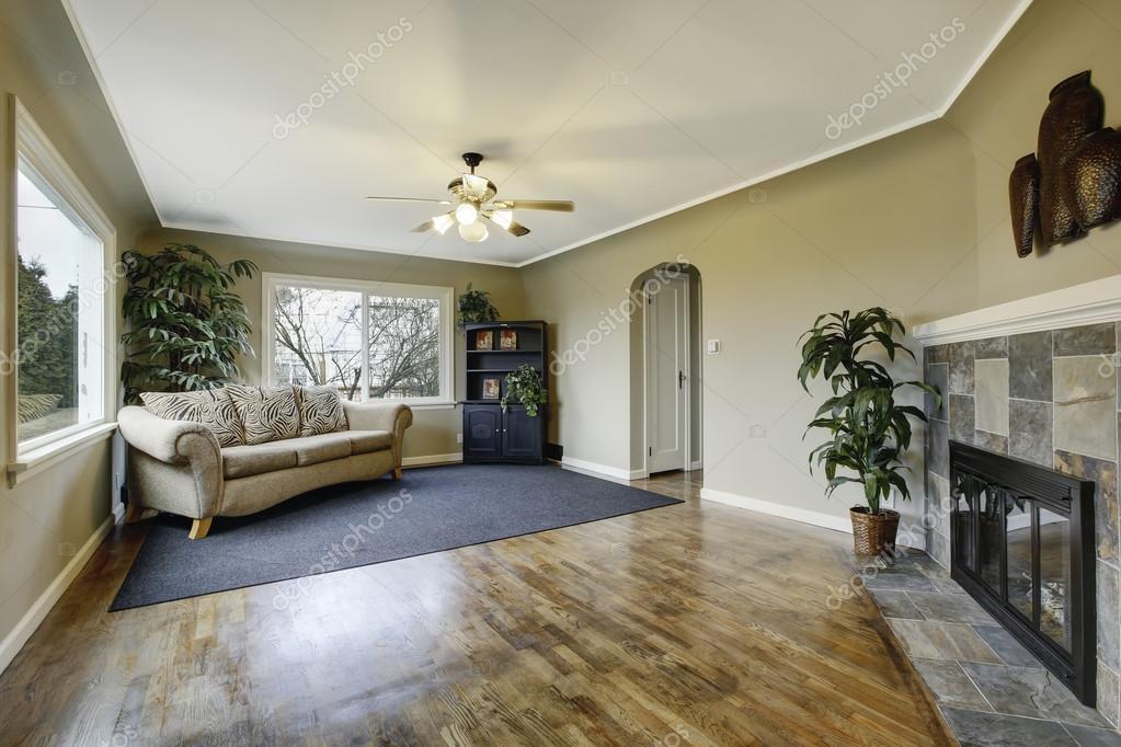 Openhaard In Woonkamer : Elegante klassieke groene woonkamer met open haard u stockfoto