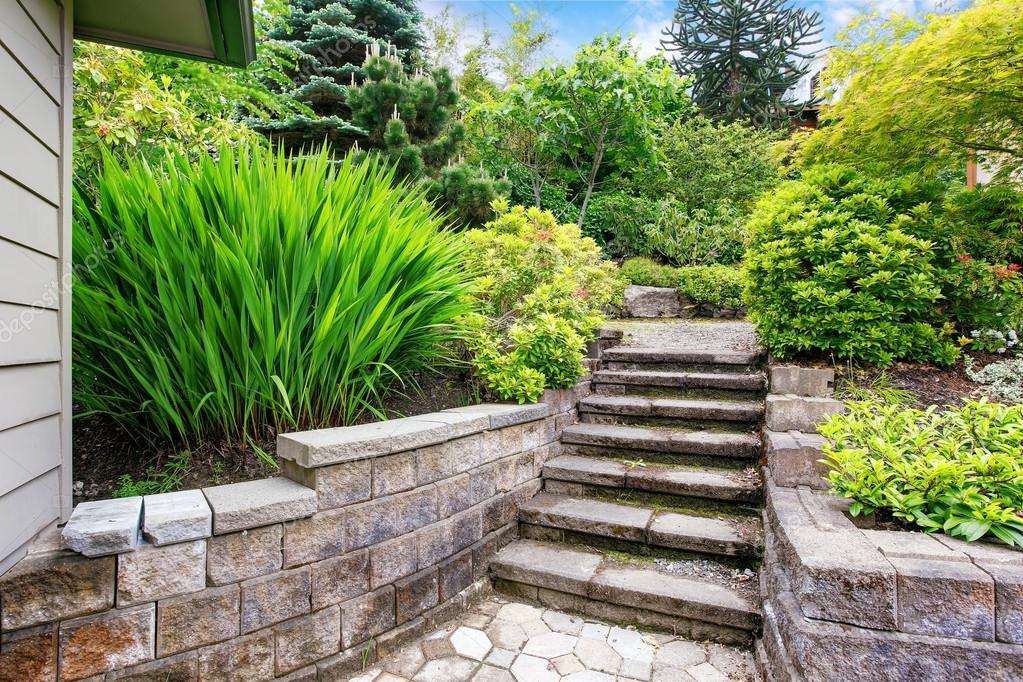 Vue des escaliers en béton pour jardin au jardin ...