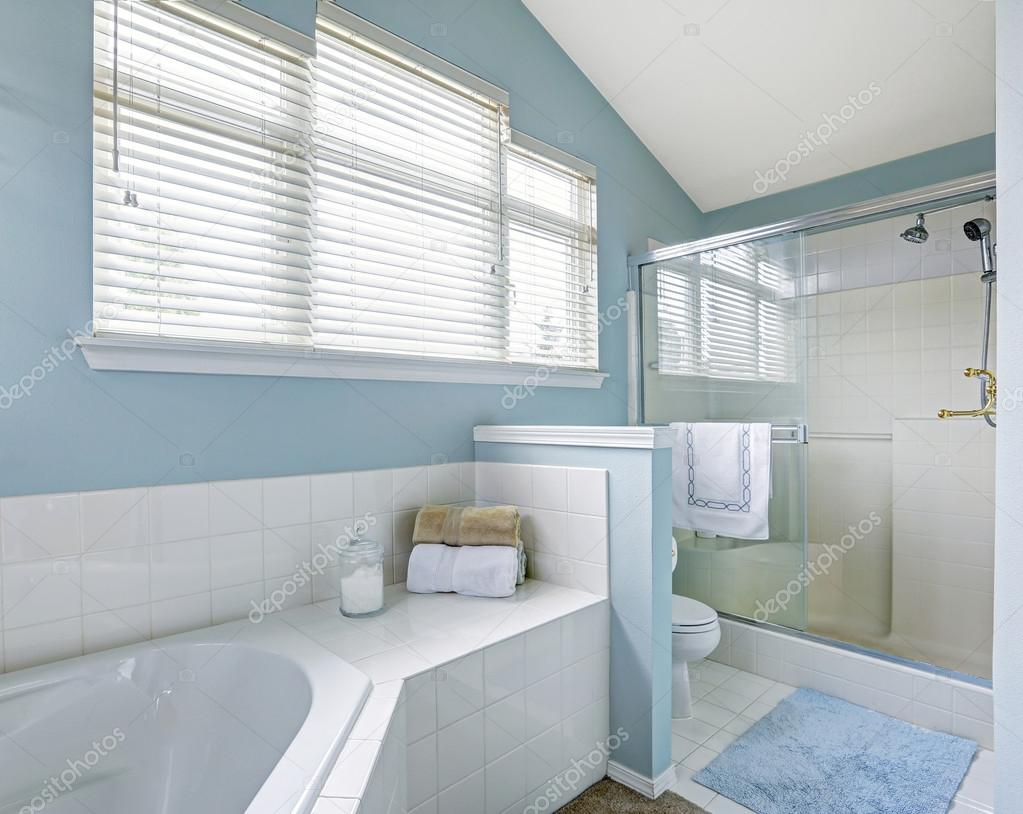 Refreshing bathroom interior in light blue tone — Stock Photo ...