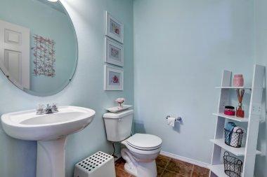 Light blue restroom with shelf