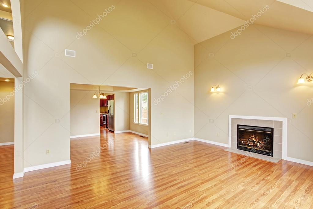 vide salle de s jour avec hauteur sous plafond et chemin e photographie iriana88w 55123233. Black Bedroom Furniture Sets. Home Design Ideas