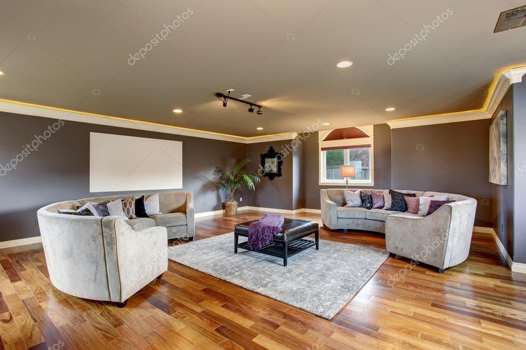 cine en casa grande sala de estar con sofs grises u imagen de stock