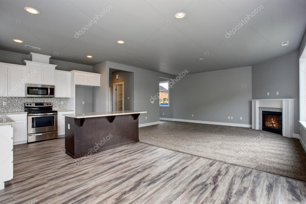 Interni Moderni Di Case : Interni moderni e completamente grigio della casa u foto stock