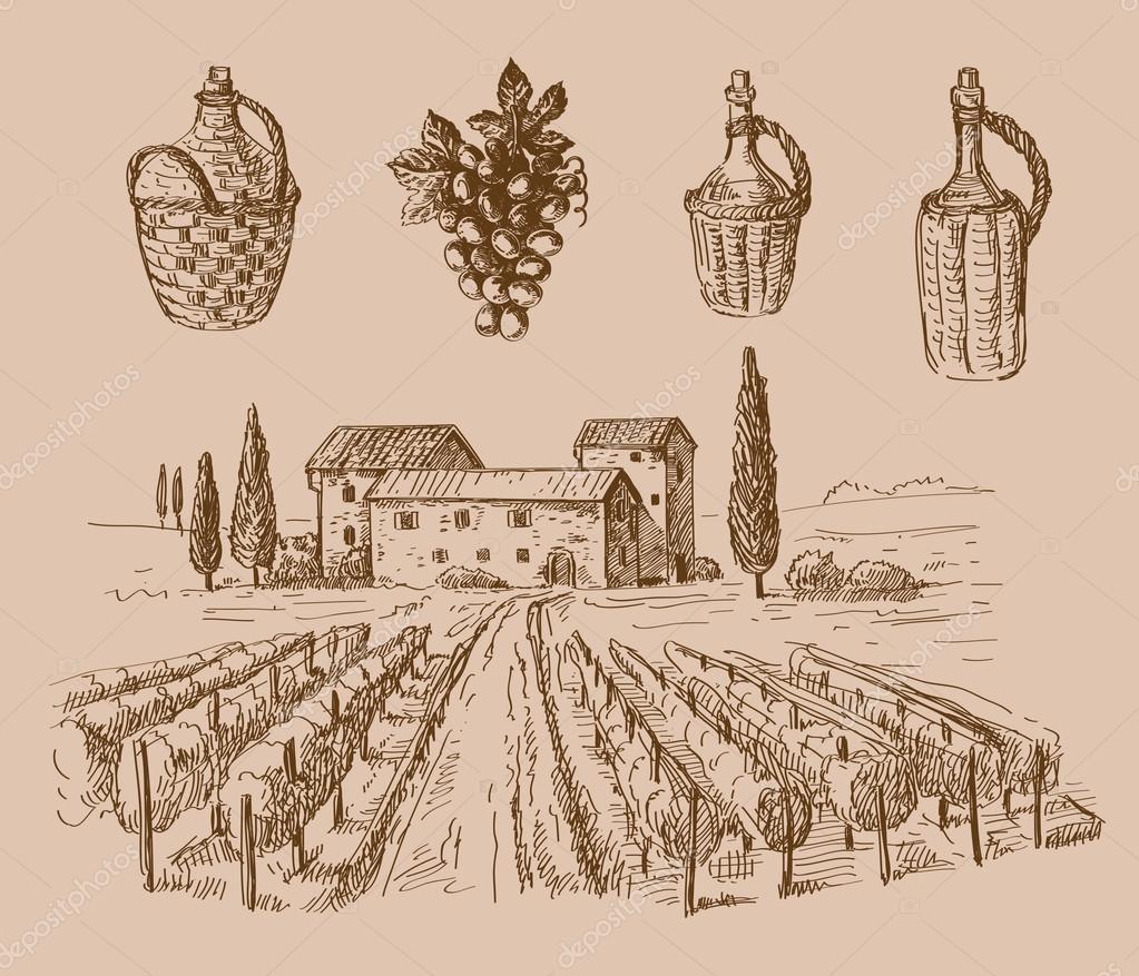 wine doodle