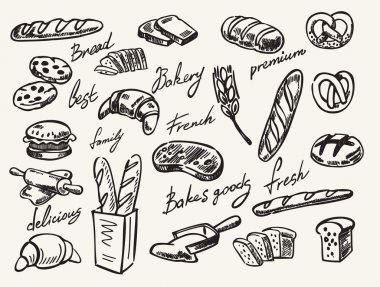 vector hand drawn bread