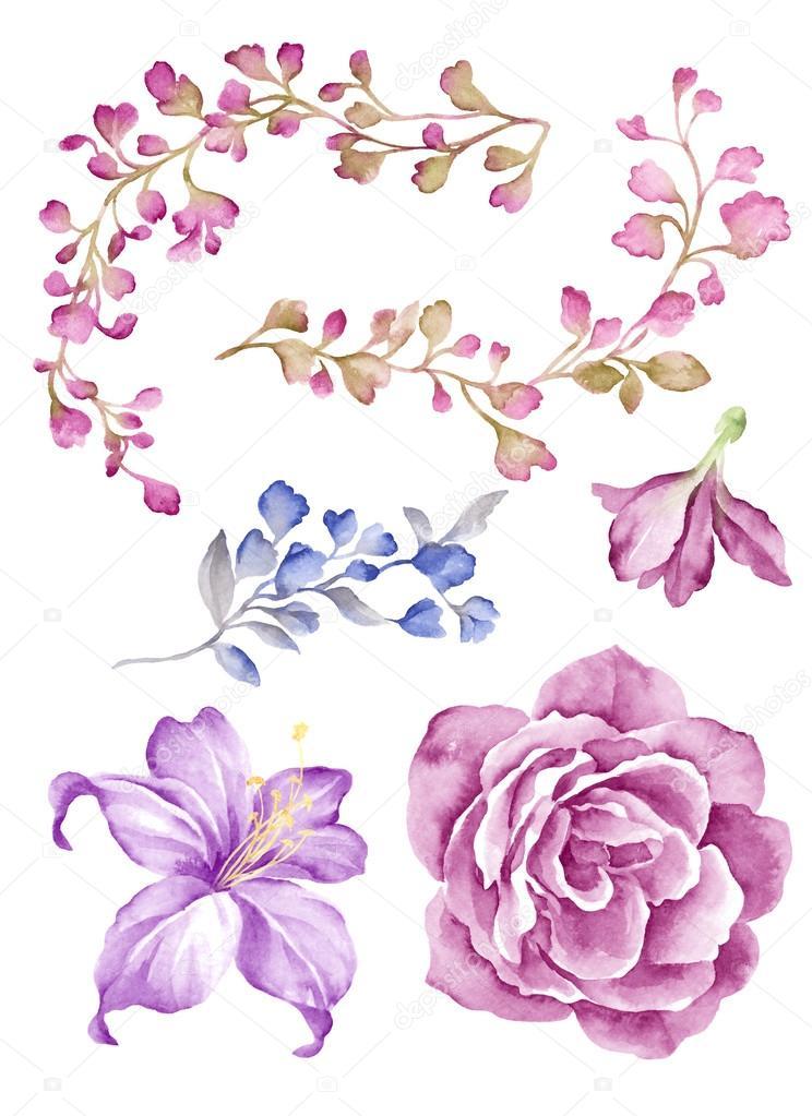 Fleur Illustration ensemble fleur illustration — photographie tanginuk1205 © #114653842