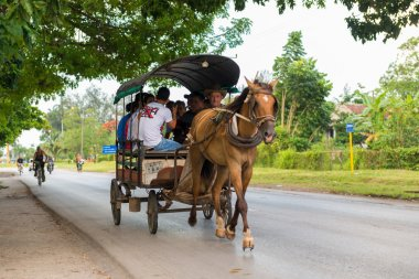 Horse drawn carriage in Cuba