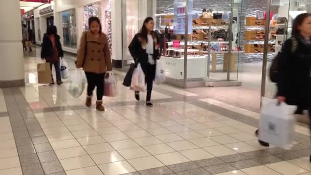 Nakupující v metropoli shopping mall