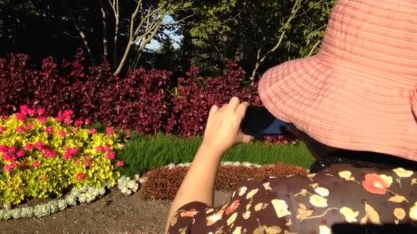 Žena, fotografování květin pomocí mobilního telefonu