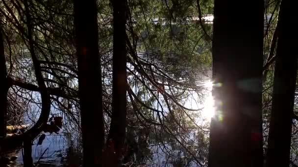 Eine Seite der Strecke Ansicht Buntzen Lake