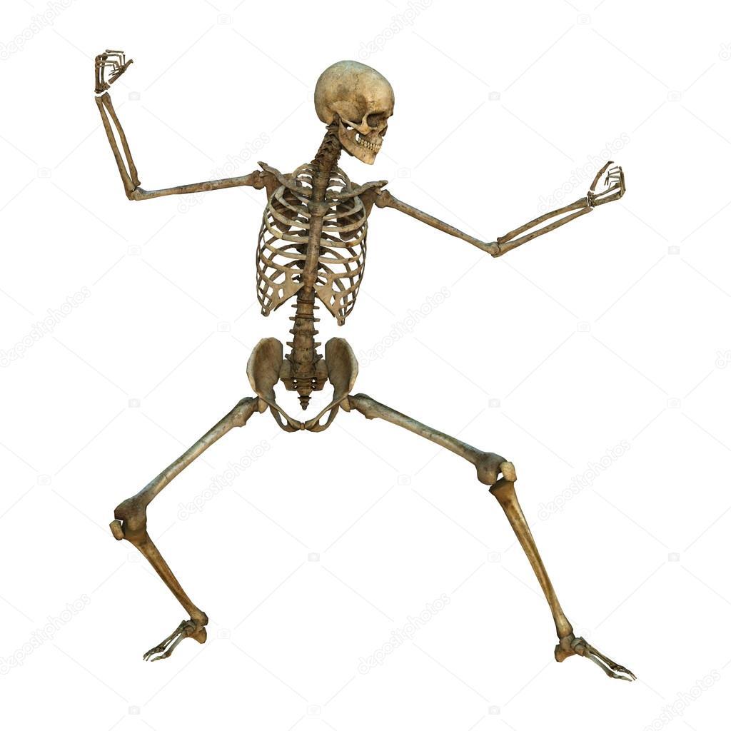 в свердловской области скелет с тремя фотографиями знаки принадлежности