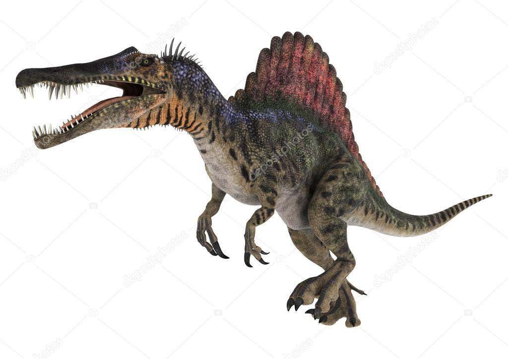 Dinossauro Espinossauro Fotografias De Stock 169 Photosvac