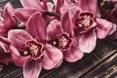 Fotografie Orchid flowers on wooden