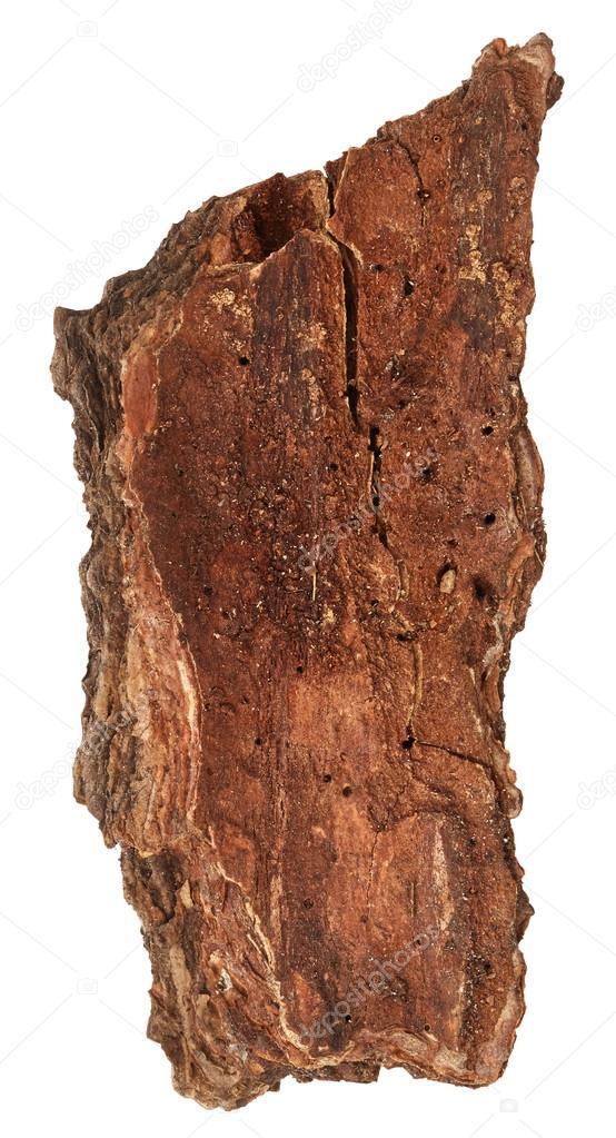Kus k ry stromu stock fotografie nik merkulov 116349692 - Tablones de roble ...