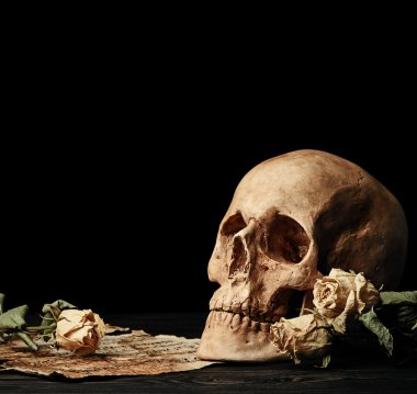 Skull with dry roses