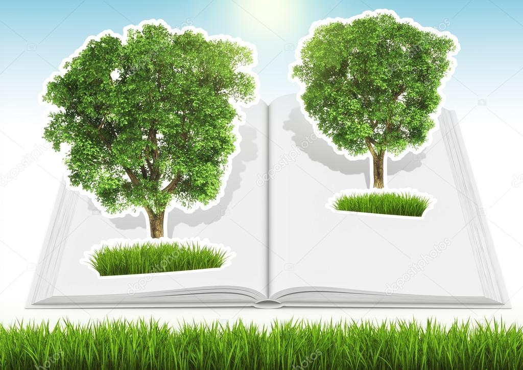 Grown tree in open book with grass and sky