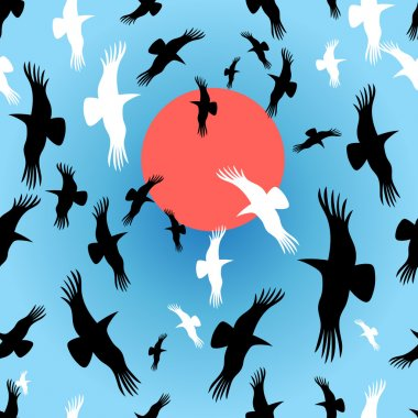 Flocks of crows circling