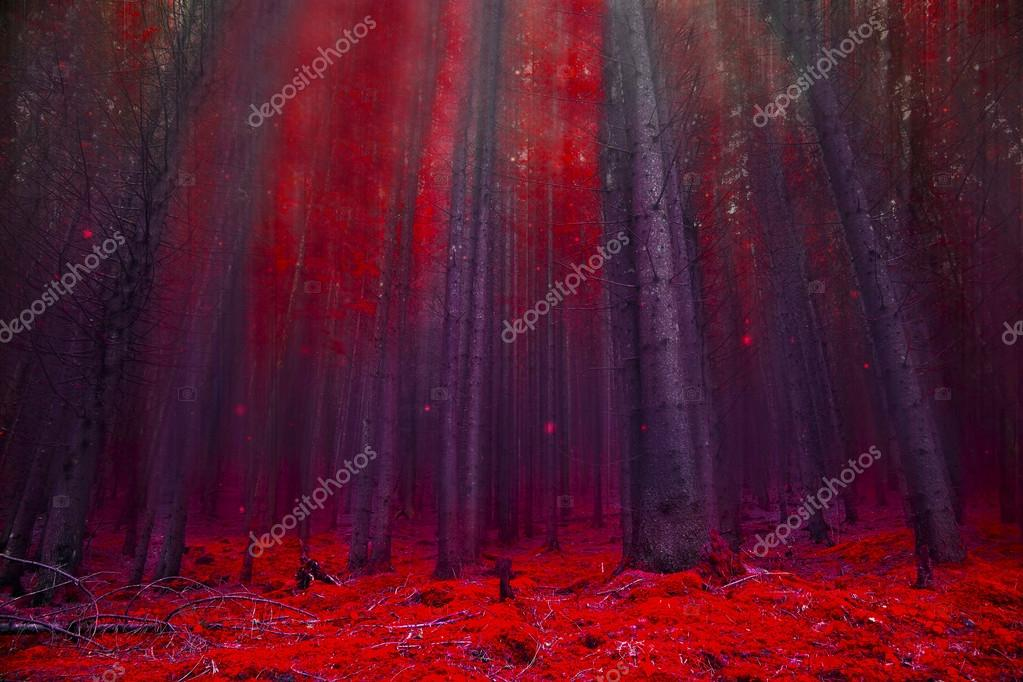 Red magic forest with lights