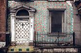 Fotografie Beautiful door in Dublin